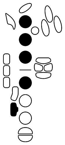 Figure 1 Side F#