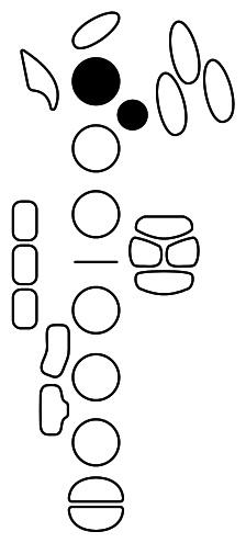 Figure 3 Bis B-flat